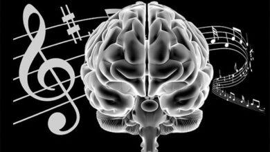 چگونه یک خواننده حرفه ای شویم؟